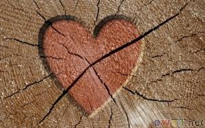 srce drvo Crna magija za ljubav